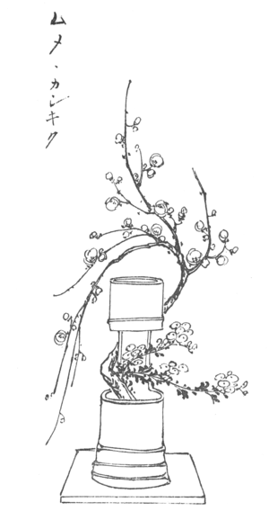 Line Drawings Of Flower Arrangements : Japanese flower arrangement chapter wikisource the