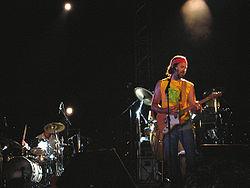 Jarabe de Palo en un concierto, 2005.