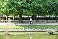 Jardin des Tuileries @ Paris (34345315545).jpg