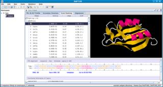RAPTOR (software) protein threading software