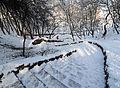 Jubilee Park in Cherkasy 02.jpg