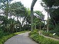 Jurong BirdPark 117.JPG