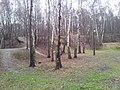 Kamionka, Mikołów, Poland - panoramio (30).jpg