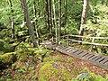 Kanavuori nature trail - stairs 2.jpg