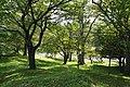 Katsuragaoka Park02s3.jpg