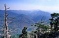 Kazdağı 09 2005 Kazdagi2.jpg