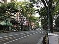 Keyaki-dori Street near Fukuoka Castle.jpg
