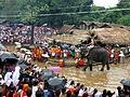 Kottiyoor temple festival IMG 9704.JPG