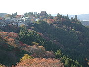 The red autumn leaves in Yoshino