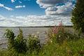 Kovajärvi-2.jpg