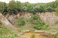Kreis Pinneberg, Naturschutzgebiet Liether Kalkgrube 18.jpg