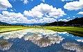 Kumamoto-Paddy fields-xl.jpg