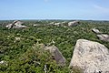 Kumana National Park (Kudumbigala Sanctuary).JPG