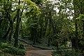 Kurpark Oberlaa - Weg am Filmteich.jpg