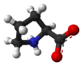 L-proline-zwitterion-from-xtal-3D-balls-A.png
