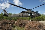 La. National Guard airlifts recycled Christmas trees to restore marshland 150402-Z-VU198-040.jpg