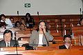 La parlamentaria Julia Teves (6881730416).jpg