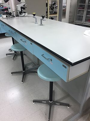 Countertop - top view of a grey lab countertop with blue drawers