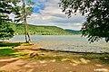 Lac de Longemer, rive est.jpg