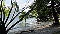 Lake Esplanade, Queenstown (482935) (9481988923).jpg