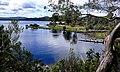 Lake St Clair NP Tas.jpg