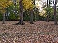 Lancaster, PA, USA - panoramio (3).jpg