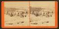 Landscape, Winter, from Robert N. Dennis collection of stereoscopic views 4.png
