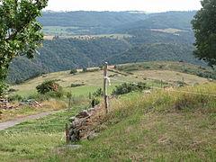 Landscape-IMG 6920.JPG