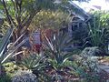 Landscape garden by Renee Gunter entitled 28th street.jpg