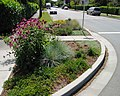 Landscaped curb extension.jpg