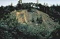 Landslide1992CapeMendocino.jpg
