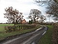 Lane to Clott House Farm - geograph.org.uk - 320613.jpg