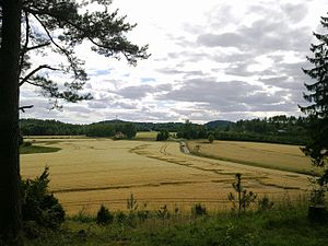 Battle of Langnes - The field from which Swedish troops launched assaults against the Norwegian position. Langnes station is behind the field to the left