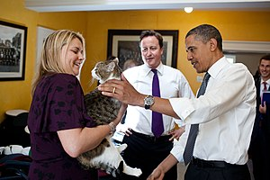 Larry (cat) - Larry with Rt Hon David Cameron and Barack Obama
