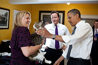 Larry (cat) - Larry with David Cameron and US President Barack Obama