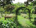 Le jardin aux iris du jardin des plantes.jpg