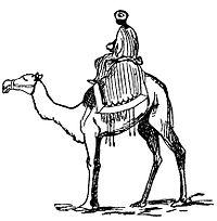 Lear 3 - Camel.jpg