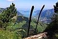 Leiterabstieg von der Rigi Hochflue in Richtung Gätterlipass.jpg
