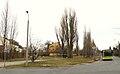Lesnych Skrzatow St. Poznan.JPG