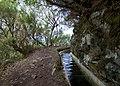 Levada do Furado, Madeira - 2013-04-05 - 90145218.jpg
