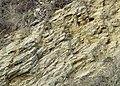 Limestone Strata, Dudley, Worcestershire - geograph.org.uk - 637053.jpg