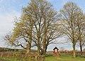 Linden in Wessum-Averesch.jpg