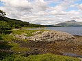 Loch Sunart - geograph.org.uk - 502357.jpg