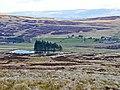 Lochan and rough pasture near Connachan Lodge - geograph.org.uk - 765395.jpg