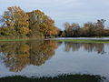 Loddon floodwaters - geograph.org.uk - 287716.jpg