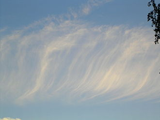 Cirrus cloud - Cirrus fibratus clouds