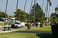 Loose bear being tracked by police in Pasadena, California 02.jpg