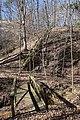 Lost Bluff Trail Mississippi 2.jpg