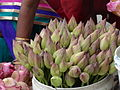 Lotus for sele in front of padmavati temple, tirucanur.JPG