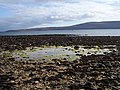 Low tide in Clestrain Sound - geograph.org.uk - 180655.jpg